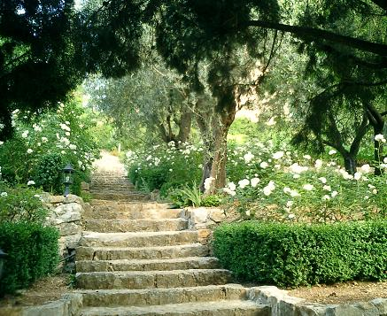 Lady Fortescue's original garden near Grasse